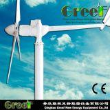 turbina di vento orizzontale cinese 1kw con la garanzia libera 3years