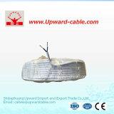 2개의 코어 구리 지휘자 전기 철사 (IEC60227)