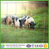 Cerca de fio galvanizada de alta elasticidade do porco para a venda