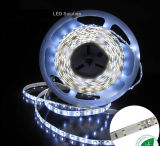 Luz de tira del LED SMD LED 5050