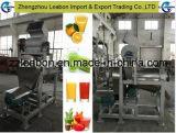 De professionele Machine van het Vruchtesap voor Verkoop