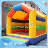 Les enfants de haute qualité Jumping Outdoor congelés Bouncer gonflable