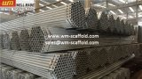 JIS3444 de Pijp van het staal met Steiger van de Bouw van de Klinknagel de Koreaanse