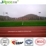 Synthetische Renbaan van de Verkoop van de fabriek de Directe in Guangdong