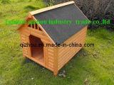 Chambre de chien (QZD8047)