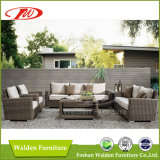藤の家具の屋外の椅子か藤の椅子(DH-N9061)
