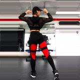 Nova Garantia de Qualidade da Impressão Digital de alta relação cintura quadril e apertadas elásticas elástica Alta Elevação Perneiras Exercício Calças de ioga