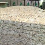 1220 x 2440mm хороший Linyi OSB для мебели или здания