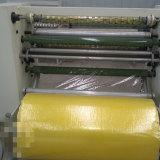 Bande écossaise du faisceau Gl-210 de papier automatique fendant la machine de rebobinage de Regina