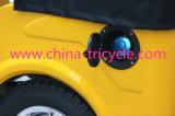 Nuovo risciò della Cina con il motore concentrare (DTR-11B)