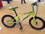 Цвет хорошего качества OEM BMX велосипед, 20 новой фристайл велосипед