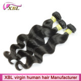 малайзиец 100% 8A Top Quality Loose Wave Weft Hair