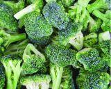 Зеленый свежий цветной капусты Китайской