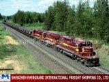 محترف الصين سكك الحديد نقل إلى طشقند