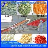 Data de vermelho Estufa de secagem de vegetais desidratados do secador