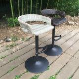 정원 안뜰 등나무 의자 (FS-R002+FS-R003)를 식사하는 현대 옥외 회전대