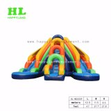 아이를 위한 다채로운 팽창식 물 미끄럼