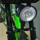後部座席が付いている2つの車輪の二重シートの電気バイク