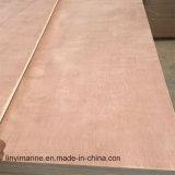 contre-plaqué de film publicitaire de bois de construction de pente de 1220*2135mm CC/DD