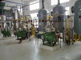 10-1000T/grade D-1/l'embryon de pépins de raisin/carthame/Équipement pour le raffinage d'huile de graines de tournesol