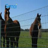 Popular en África, cerca de la granja/Feild valla/Compensación valla de ganado