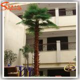 Garten, der künstliche Palme landschaftlich verschönert
