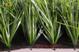 Ecoは人工的な草、屋内屋外のサッカーの合成物質の草を遊ばす