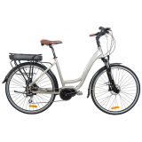 Bicycle elettrico di Al-Alloy Carbon Steel 36V 250W S.U.A. Market