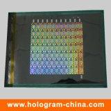 maître d'hologramme de degré de sécurité du laser 2D/3D