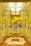 Eleganter Handelsgebäude-Passagier-Höhenruder-Preis in China