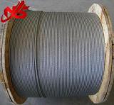 Constructeur galvanisé du câble 6X19 de fil d'acier d'avions