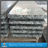 Polished Yellow Color G682 Granite Stone Step Step pour les escaliers