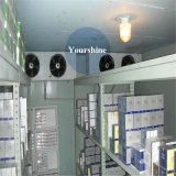 Conservazione frigorifera della medicina professionale ad alta densità