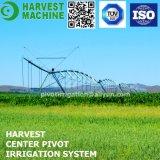 Sistema de irrigación de centro del pivote para la irrigación del trigo