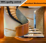 Moderno diseño interior escalera de caracol con baranda de Escalera de acero inoxidable