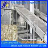 Machine de séchage pour des parts de gingembre et d'ail
