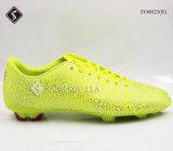 De Schoenen van de Sporten van de Schoenen van de Opleiding van het Voetbal van mensen