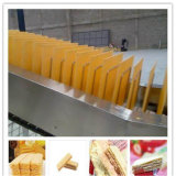 Chaîne de production à haute production de biscuit de disque de machine de transformation des produits alimentaires de Saiheng