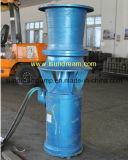 Haut de la pompe à eau de puits profond de décharge