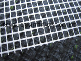 Acoplamiento resistente alcalino de la fibra de vidrio del material de construcción de la alta calidad 160G/M2
