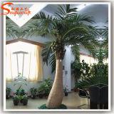 Пальма кокоса сразу стеклоткани фабрики искусственная