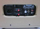 De akoestische Versterker van de Controle van de Gitaar/de Elektronische Versterkers van de Controle van de Trommel 30W (Mg-60)