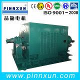 Magnetischer Bewegungselektrischer Wind-Generator 500kw