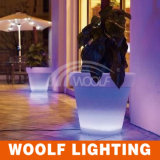 16 couleurs ont changé la lumière rechargeable de bac du bac de fleur de DEL DEL, bac d'éclairage LED