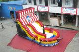 膨脹可能な海賊船のスライドのジャンプのコンボのバッカニアの膨脹可能なスライド(CHSL165)