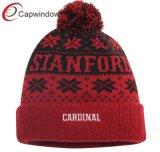 Вязаные зимние виды спорта для взрослых акриловый Beanie Red Hat (65050099)