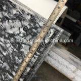 적당한 G418 파 벽 지면 클래딩 덮음을%s 백색 회색 화강암 도와