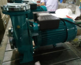 Pompa ad acqua elettrica periferica centrifuga di Hfm della pompa ad acqua