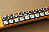 F21-20s elektronische Handkurbel-drahtloses Fernsteuerungs