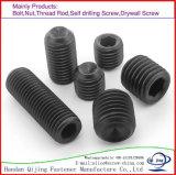 Hex Einstellschraube der Kontaktbuchse-DIN916 mit Kontaktbuchse-Einstellschraube-Edelstahl des Cup-Punkt-/Hexagon/Kohlenstoffstahl